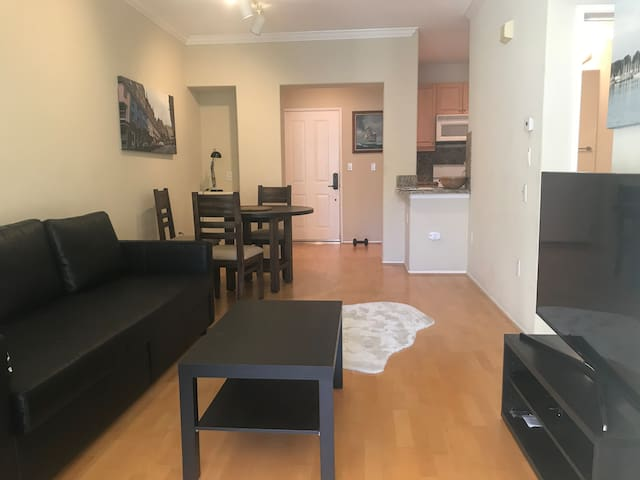 Fully furnished condo in Southern Irvine