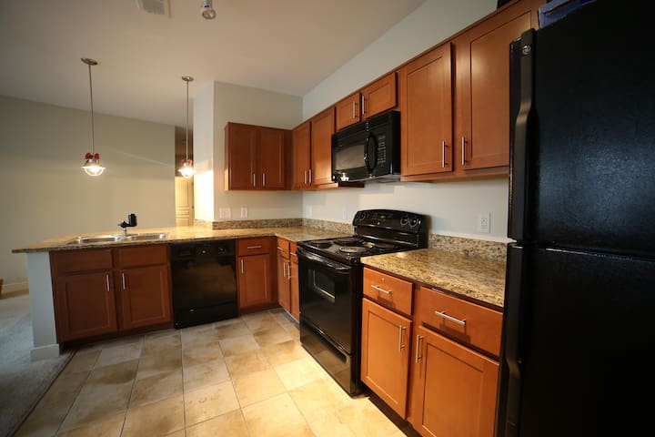 Luxury 2 BDRM APT close to metro, DC, & shopping - Hyattsville - Apartment