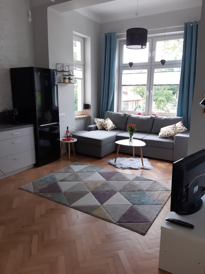 Apartament - centrum for Buisness or Lovers
