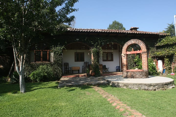 san cristobal de las casas single parents Accommodations home  l ive in the home of a warm and welcoming mexican family in san cristóbal de las casas,  and if you are in san cristobal de las casas,.