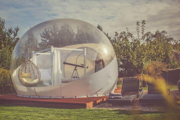 wBańce.pl Bitcoin Bubble Tent
