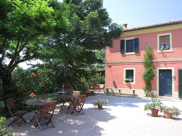 A house of flowers, wellness,relax - Monte San Vito - Penzion (B&B)