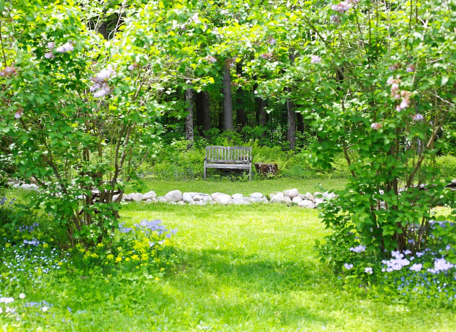 The bench near the stream and pond outside the guest room.