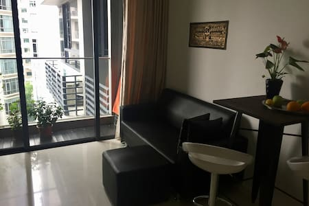 New 1 bedroom condo near city centre - Singapore
