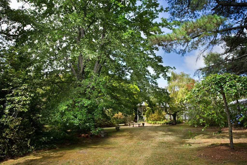 Kerambi Cottage is on an enchanted acre of mature garden.