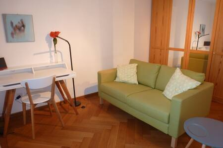 Lovely room with private bathroom  - Winterthur - Hus