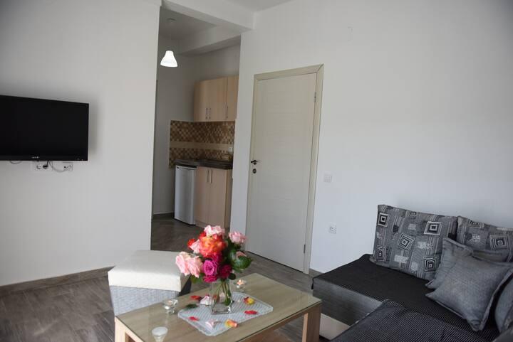 Apartments Cota,Lux apartment 1