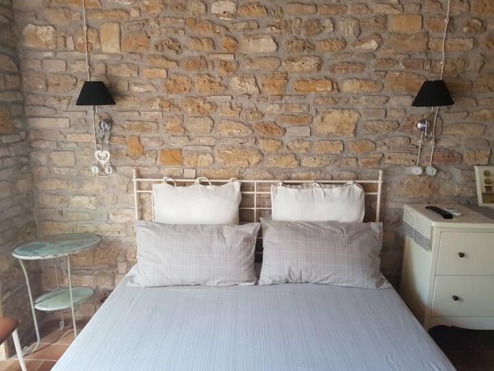 Cozy Apartment (Country House il Sassòne)