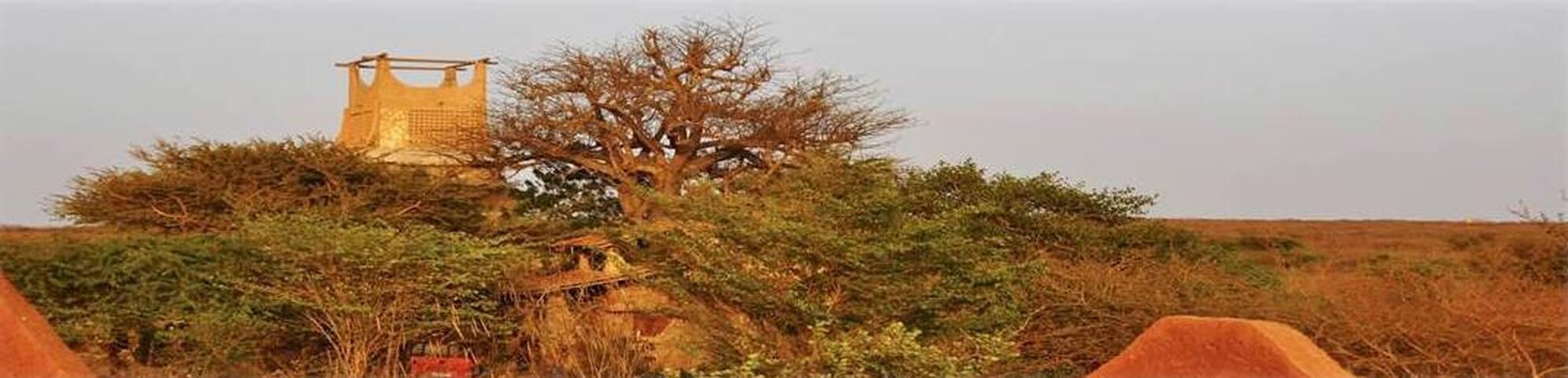 Djarama- Pôle Culturel dans brousse - Toubab Dialao
