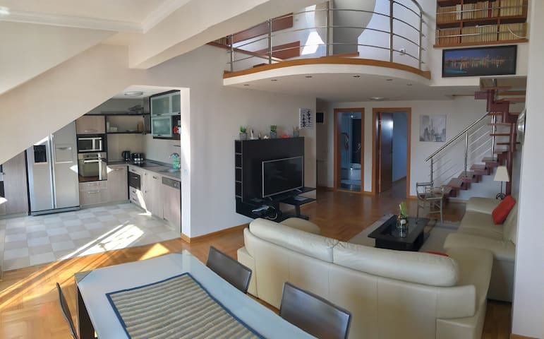 Sunny, modern penthouse in Vračar /parking - Beograd