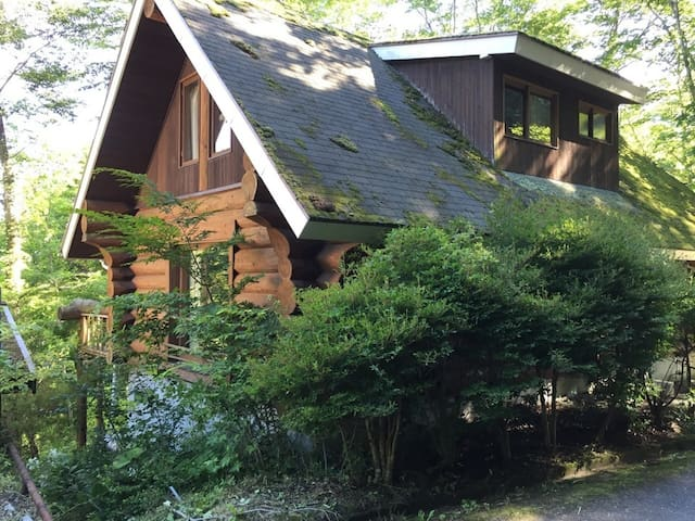 Vacation Loghouse! Free Wifi! Close to Mt. Fuji private! A villa in Yamanakako!【貸別荘・コテージ】wifi無料!富士山の近く山中湖の別荘地1棟貸切プラン