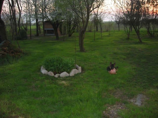 Bisa Country House - Santa Vittoria - Dom