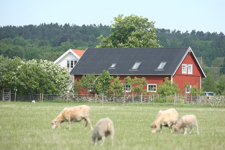 Beautiful converted barn on a small farm