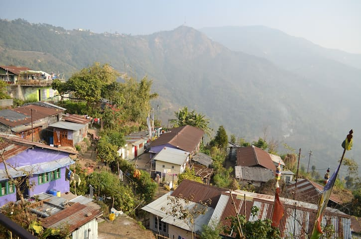 Homestay Makaibari Tea Estate - Kurseong - House