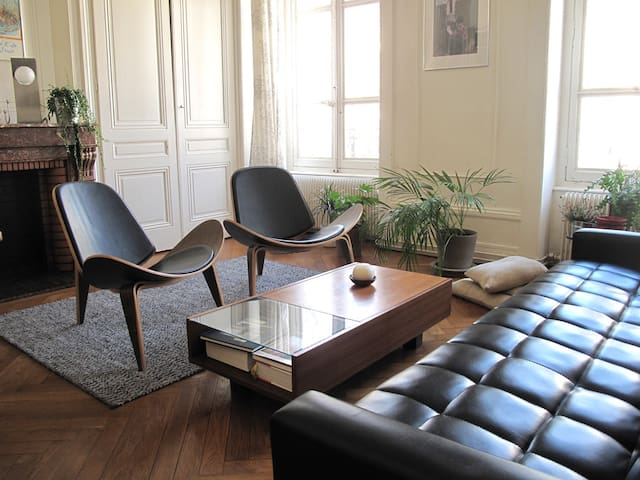 Large and bright apartment in lyon - 法國里昂 - 公寓
