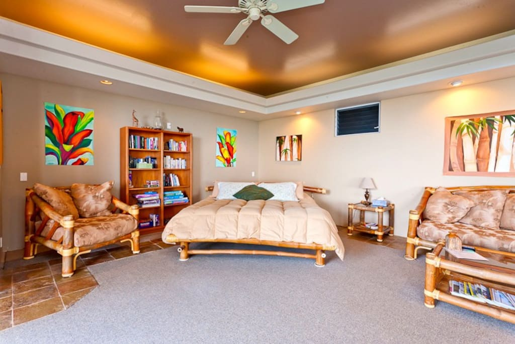 King bed in the living room / bedroom combo
