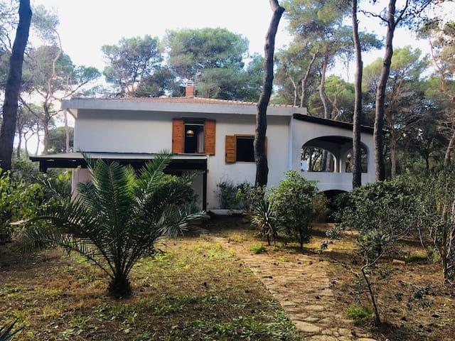 Villa immersa nel verde, con spiaggia privata