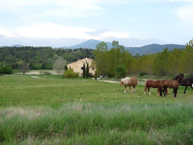 Studio au pied du Mont Ventoux - Malaucène - Huoneisto