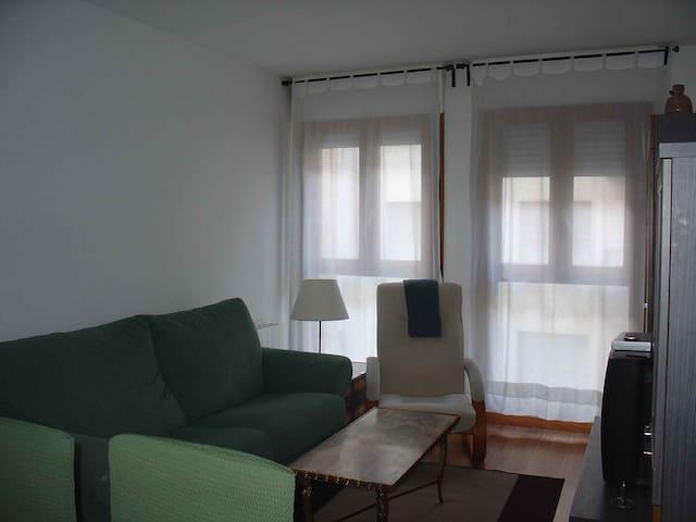 Acogedor apartamento - Sabiñánigo
