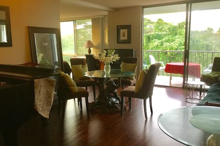 Artsy Oceanfront Apartment - Hilo