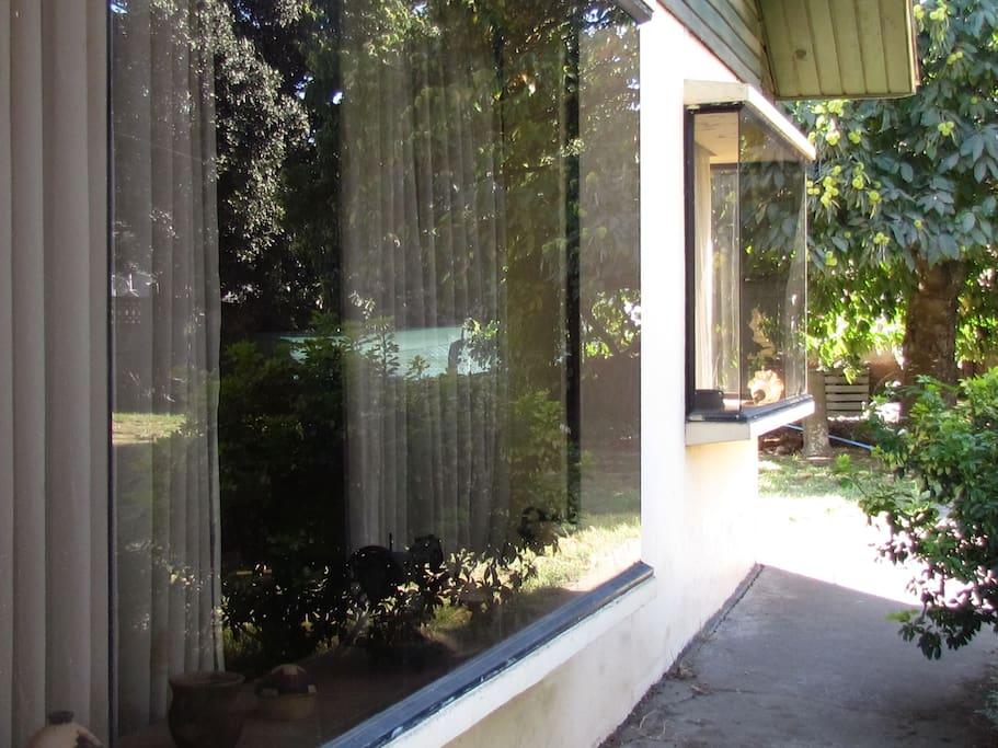 Ventanal de la habitación que desde el frente de la casa se puede observar el jardin