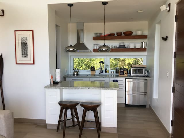 open concept custom kitchen and counter tops with garden view