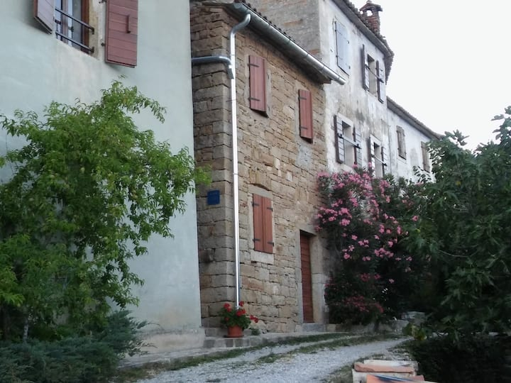 Studio Apartment in picturesque Istrian village