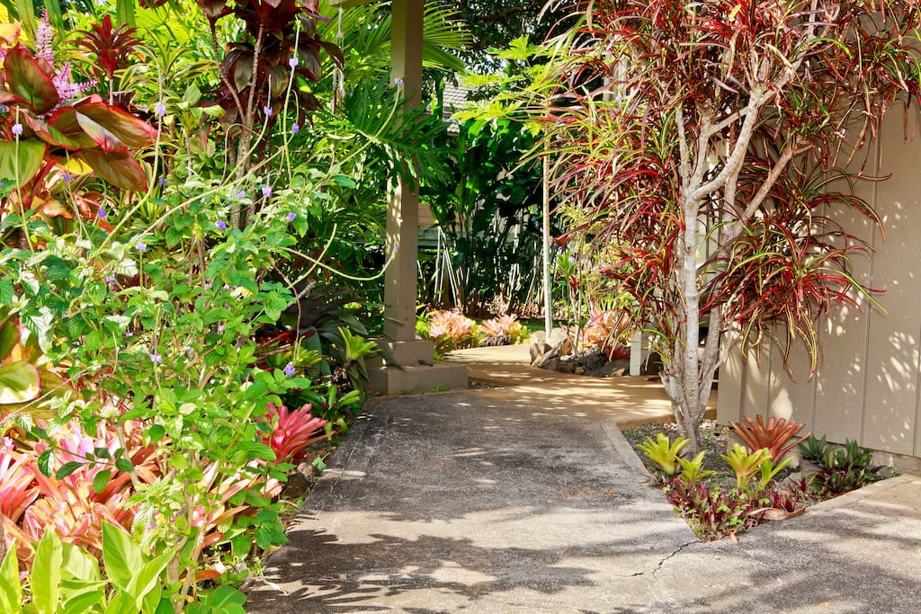 A tropical walk to the front door