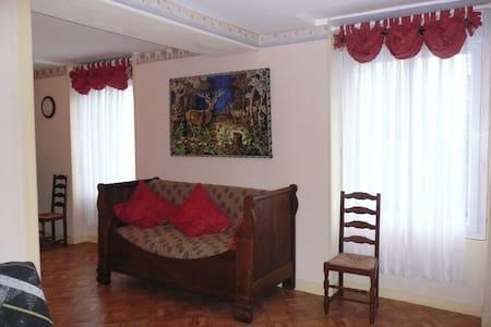 Appartement CHATEAUX DE LA LOIRE - Byt