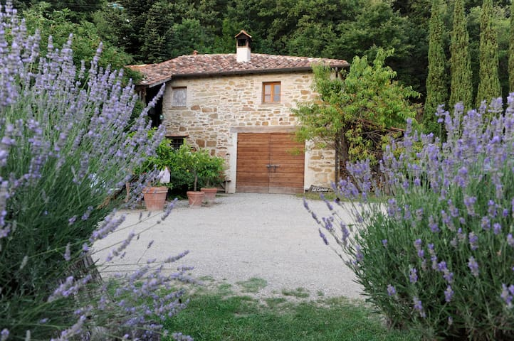 Tuscany Villa with private pool! - Sansepolcro - Villa
