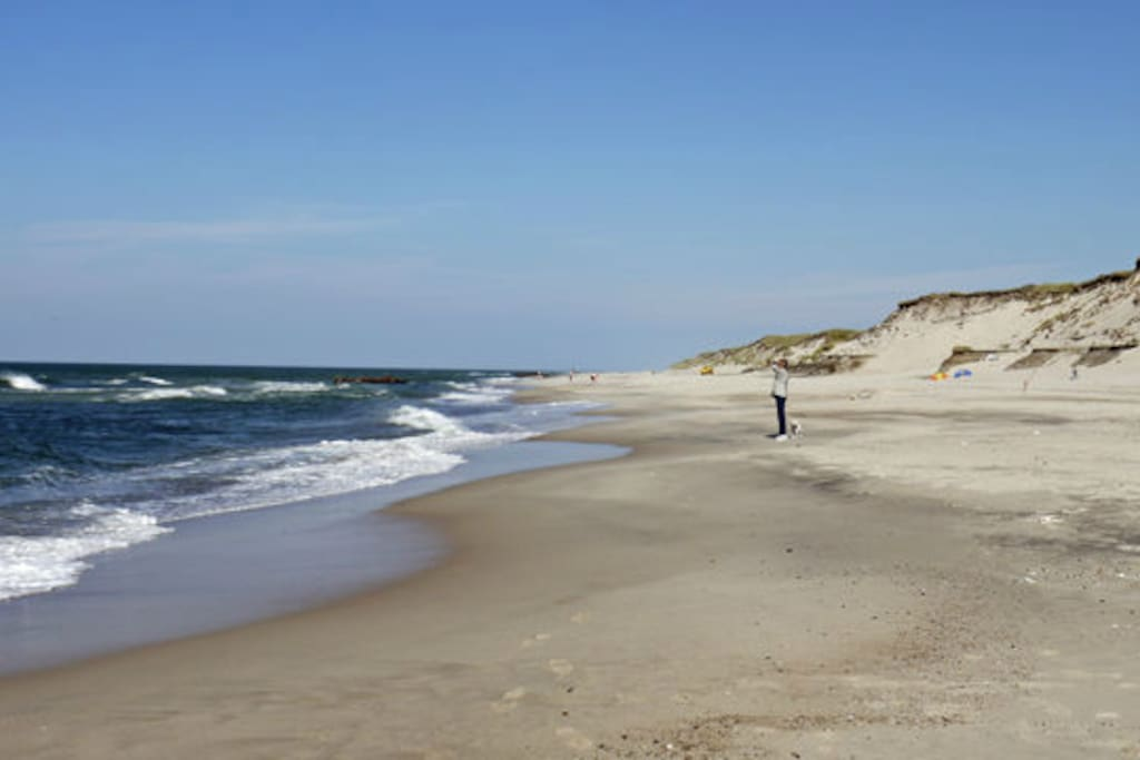 Græm Beach by the North Sea