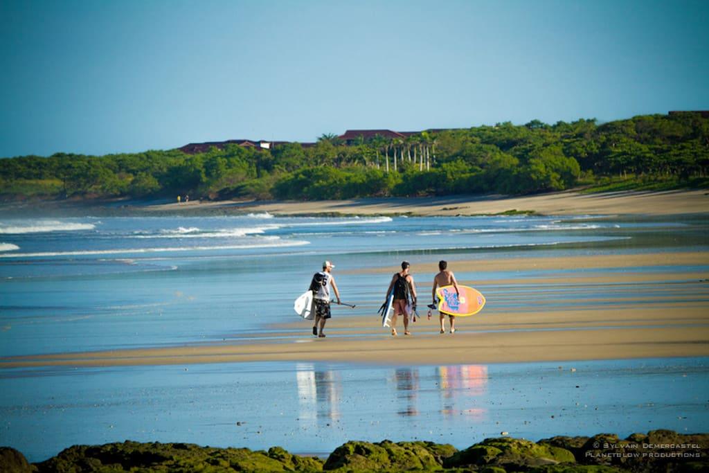 Nearby beaches are wonderfull !