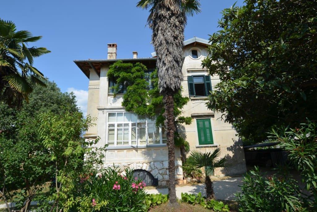 Appartamenti In Affitto Rovigno Croazia