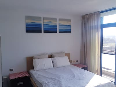 南科豪宅 獨立套房 - luxury room