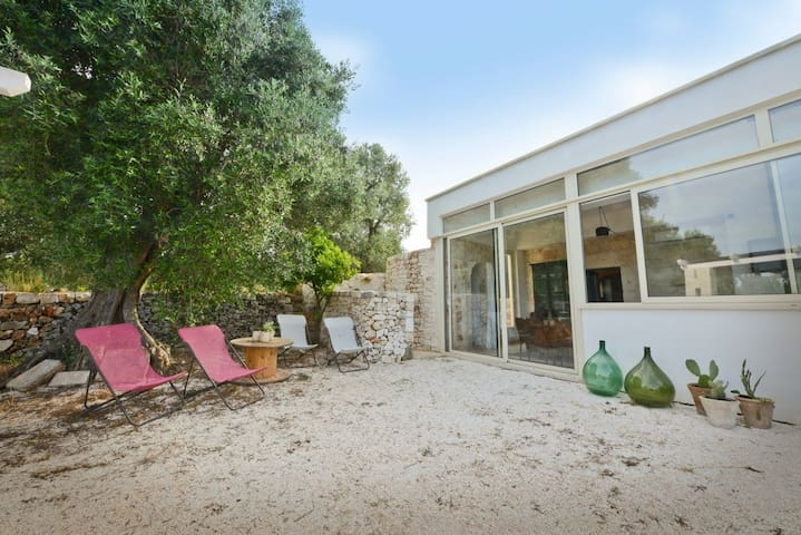 The main entrance of the villa and the garden with olive trees
