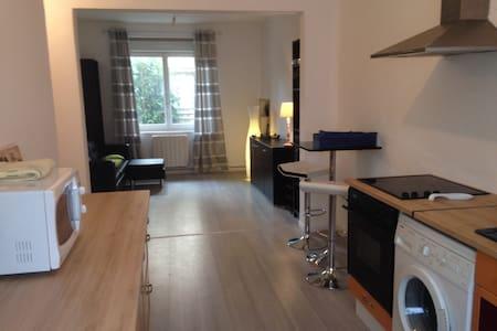 Appartement proche centre ville Oyonnax - Oyonnax