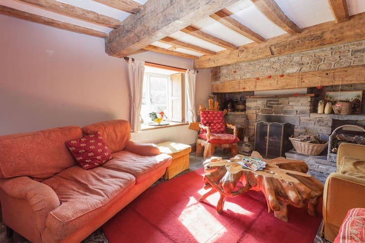 Cosy snug, with open fireplace