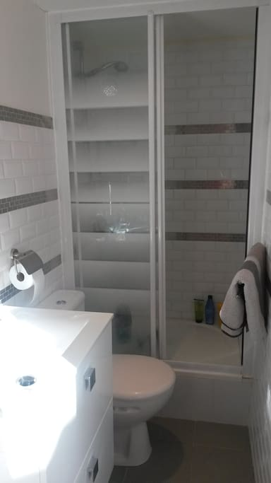 The small but very well-arranged bathroom (including shower and toilet)