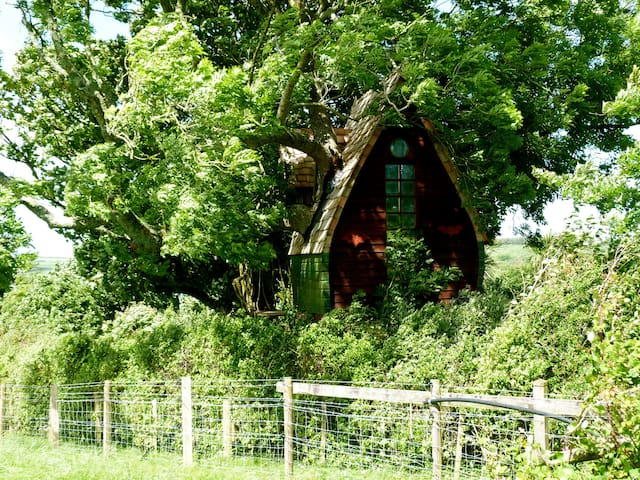 Tree Sparrow House, Cornwall. - Helston
