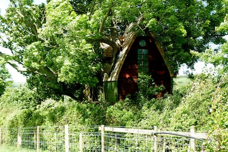 Tree Sparrow House, Cornwall. - Boomhut