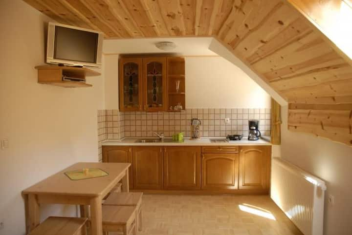 Apartment in Logarska Valley with a mountain view