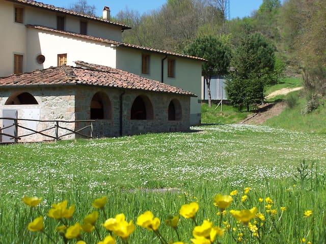 Farm Holidays Montassi e Bruscolaio - Montevarchi - Apartamento