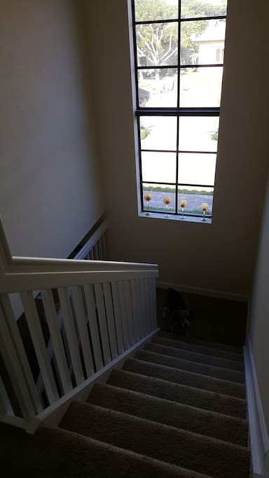 Stairs to your room