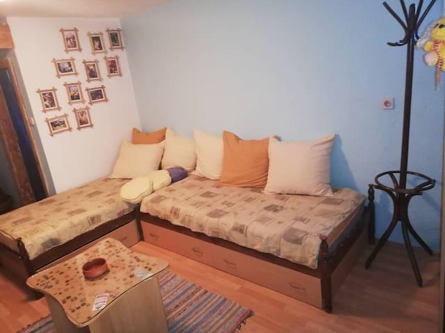 Andovi's Eco friendly house