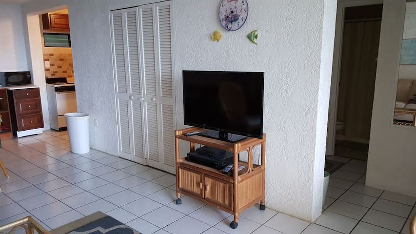 TV with HDMI cable