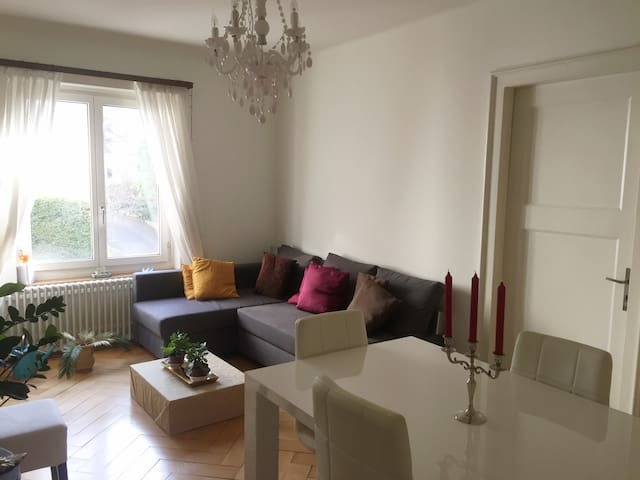 Nice central flat, close to the Lake, to feel home - Zürich - Wohnung