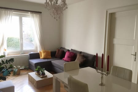 Nice central flat, close to the Lake, to feel home - Curych - Byt