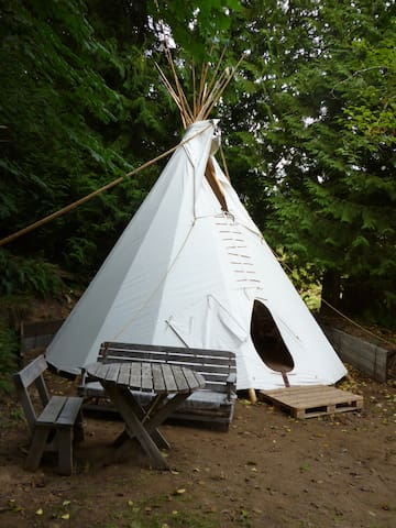 Summer 20' Tipi on Duck Creek Farm - Salt Spring Island - Tipi