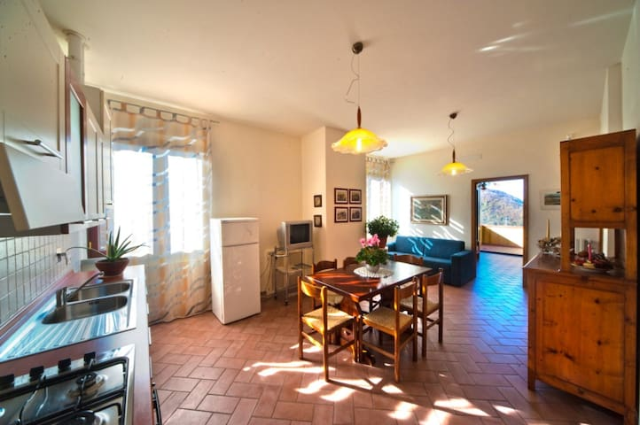 Tuscany apartment rental in Chianti - Greve in Chianti - Lejlighed