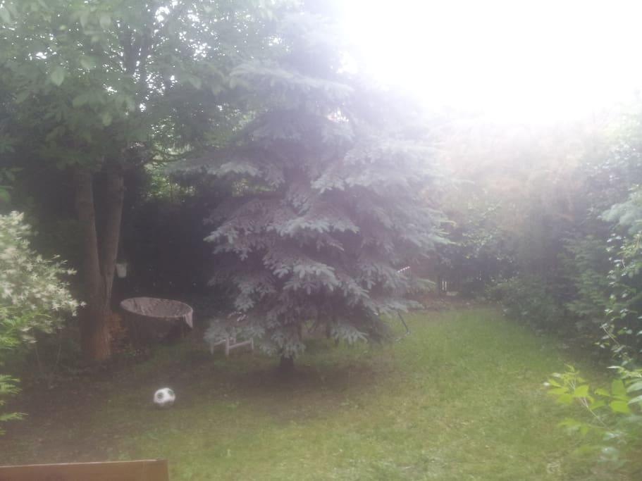 20m2 ogródek z grillem/ garden with grill :)